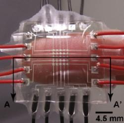 Tactile sensor skin