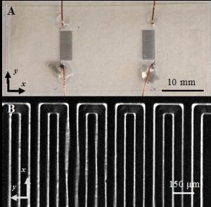 Tactile sensor skin for shear-2